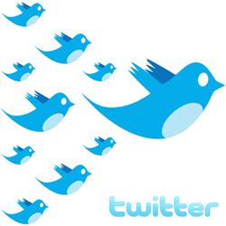 twitter_follower_management